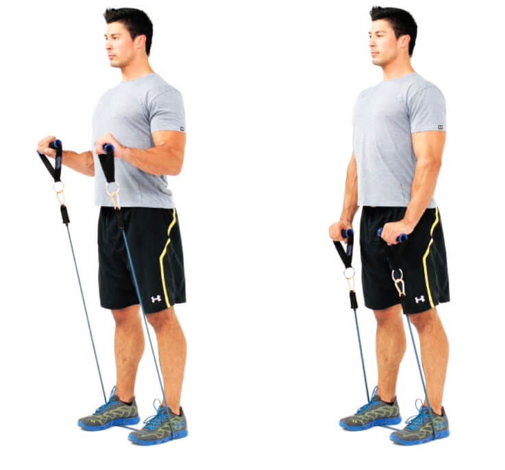 Resistance Rope Arm Exercises - Biceps Exercises - Hummer Curl Exercise